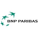 bnp_wbg
